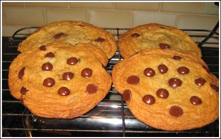 Giant Flat Chocolate Chip
