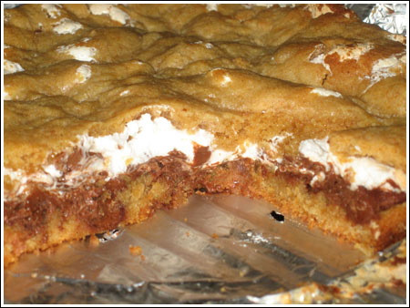 s'mores bars cross-section