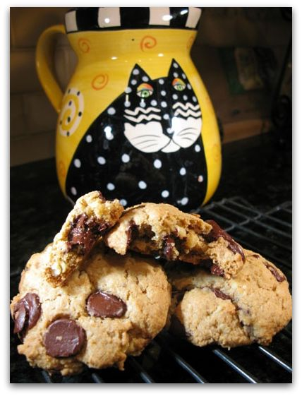 vegan oatmeal chocolate chip cookies