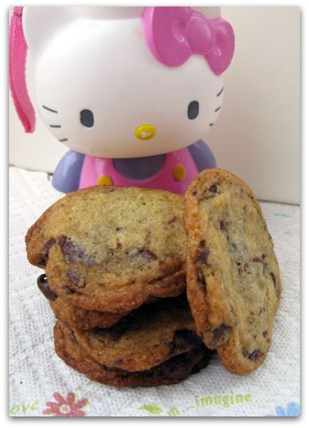 Alton Brown Thin Chocolate Chip Cookies