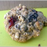 Loaded Oatmeal Cookie