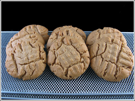 moosewood peanut butter cookies