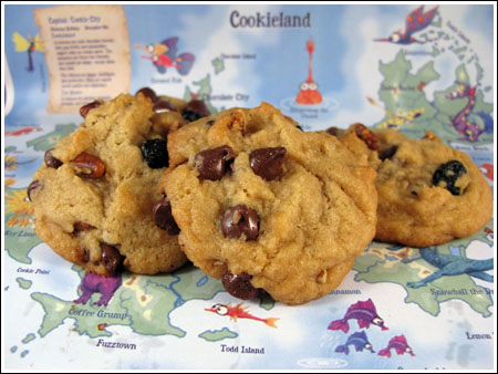 blueberry-chocolate-chip-cookies
