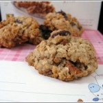 Granola-Coconut-Chocolate Chip Grabbers