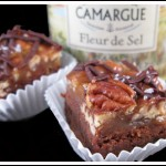 sea-turtle-brownies-2