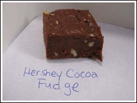 fudge with cocoa