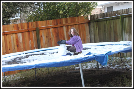 Photos of Fuzz Building a Snowman on Trampoline