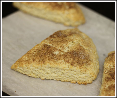 Cinnamon Topped Cream Scones