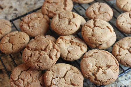 Triple Ginger Cookies - Cookie Madness