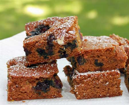 Blueberry Gingerbread Bars