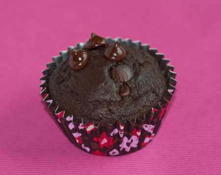 Coconut Oil Chocolate Muffins