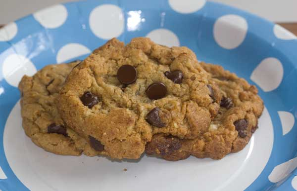 chocolate chip cookie with ground granola