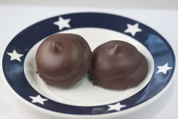 Whippets or Chocolate Covered Marshmallow Cookies