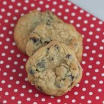 Deluxe Chocolate Chip Pudding Mix Cookies